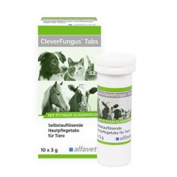 Alfavet Clever Fungus Tabs 10x3g