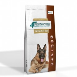 4T Dieta Veterinara INTESTINAL DOG, VetExpert 14 Kg