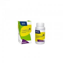 Condroprotector pentru articulatii, CONDROCARE, STANGEST, 30 tablete