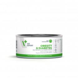 4T Dieta Veterinara pisici Obesity& Diabetes , VetExpert, conserva, 100g