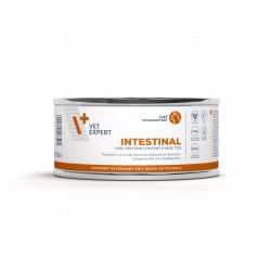 4T Dieta Veterinara pisici Intestinal Cat, VetExpert, conserva, 100g