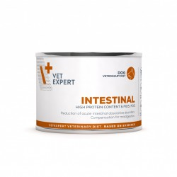 4T Dieta Veterinara caini Intestinal Dog, VetExpert, conserva, 200g