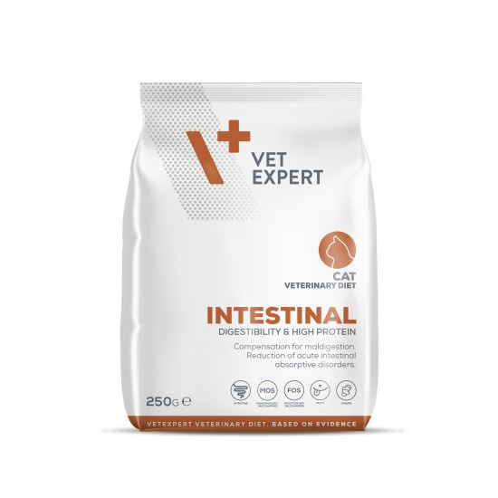 4T Dieta Veterinara INTESTINAL CAT, VetExpert, 250g